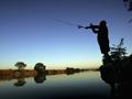 Angler at play