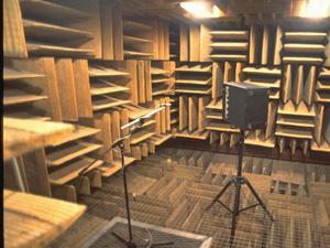 The Quietest Place On Earth Minnesota Public Radio News
