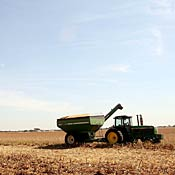 Farmer harvests corn in Illinois