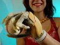 A bionic hand