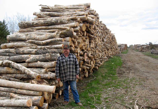Wayne Skoe's lumber yard in Northome, Minn., looks like a logging equipment graveyard as demand for building materials has dropped with the housing market.