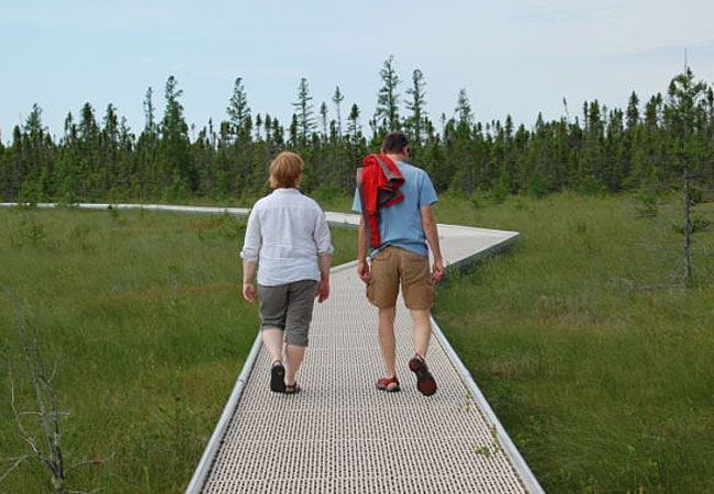 Boardwalk gives visitors better access to Big Bog | Minnesota ...