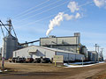 South Dakota cellulosic plant