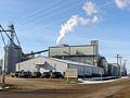 South Dakota cellulosic plant