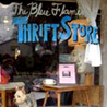 The Blue Flamingo Thrift Store