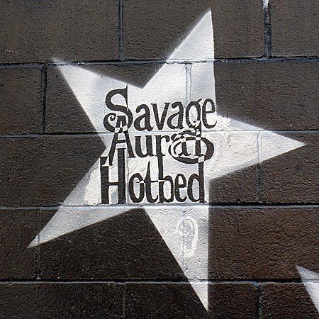 Savage Aural Hotbed The Unified Pounding Theory