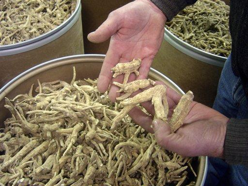 Wisconsin Ginseng Farm For Sale