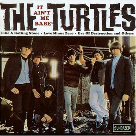 Album art for The Turtles's