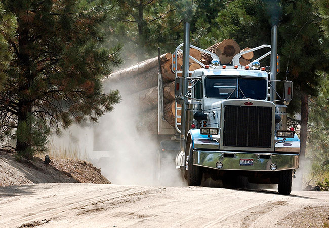 Image result for logging truck
