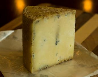 Ziege Zacke Bleu, a new cheese out of Wisconsin's artisan cheese community.