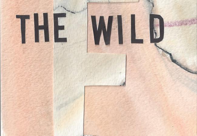 "The Ericksons - ""The Wild"""