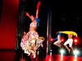 Contempo Physical Dance