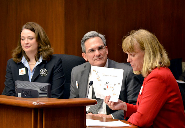 DFL Rep. Laurie Halverson, left, Catholic Charities of St. Paul and Minneapolis CEO Tim Marx, and Lutheran Social Services of Minnesota CEO Jodi Harpstead testify before a House committee, Feb. 19, 2013, about the request for $8 million to help homeless youth across the state.