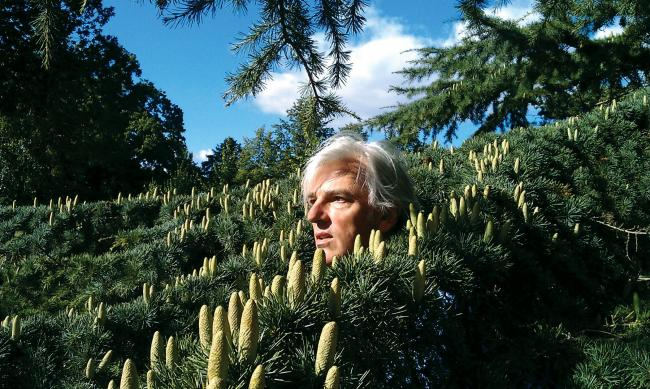 The Soft Boys' Robyn Hitchcock is preparing the release of his 19th solo album just in time for his 60th birthday.