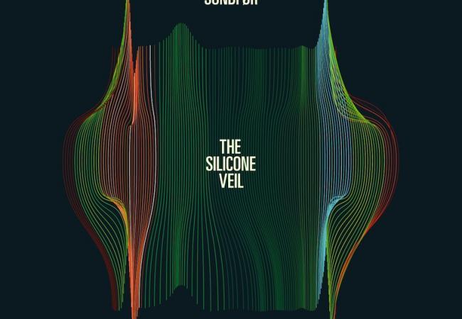 Susanne Sundfor - The Silicone Veil