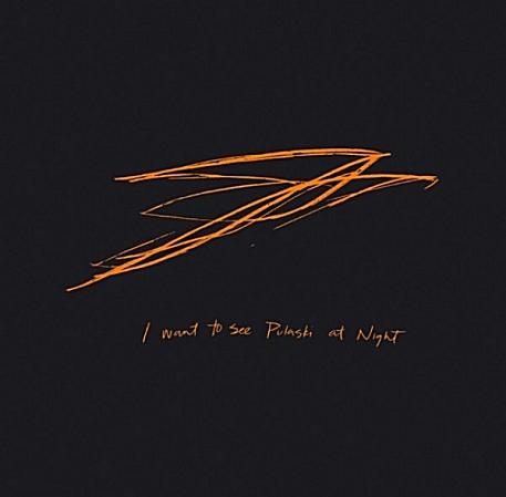 Andrew Bird - I Want To See Pulaski At Night