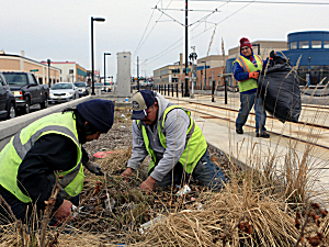 Landscape work on Green Line
