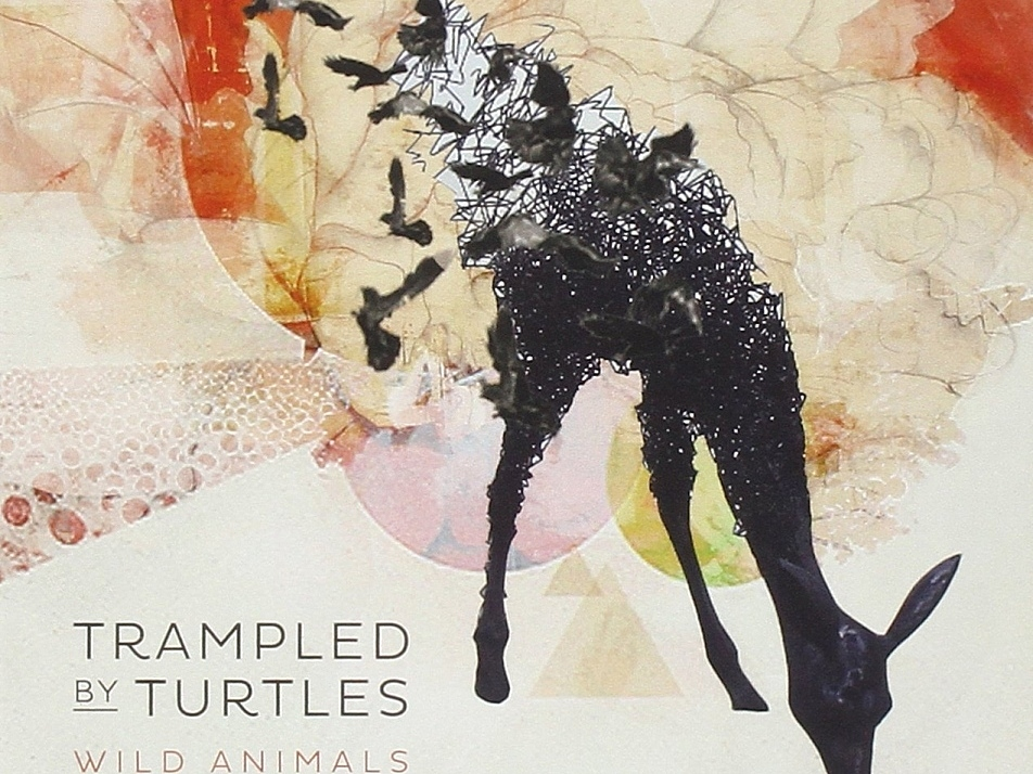 Trampled by Turtles' album, 'Wild Animals', releases Tuesday, July 15.