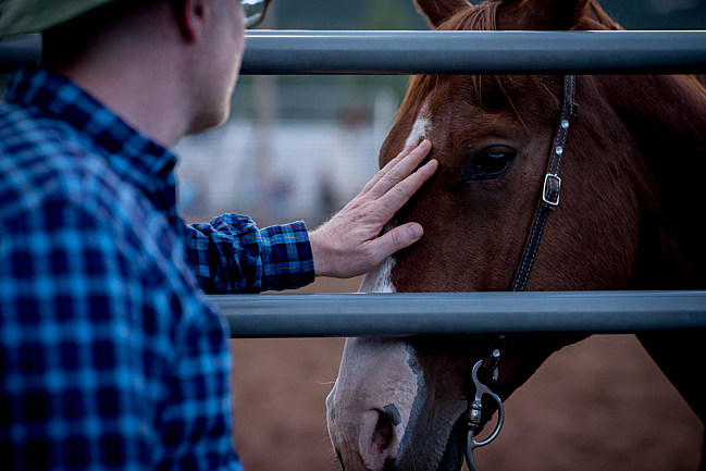 Petting a horse at the Snowmass Rodeo