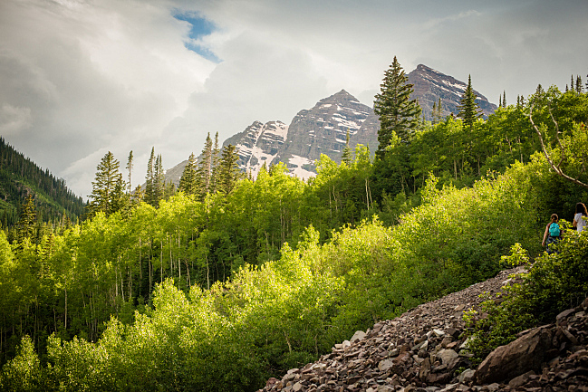Aspen trees in front of the Maroon Bells