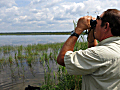 Rod Ustipak helps manage the wild rice lakes.