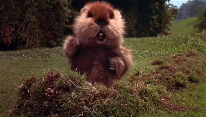 The gopher from  Caddy...