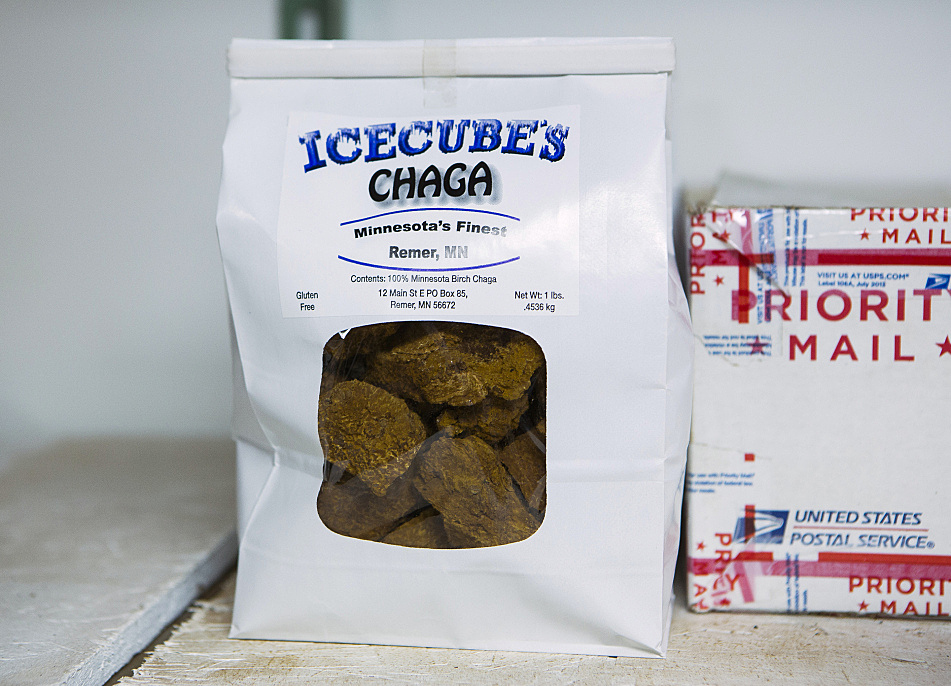 Icecube Enterprises in Remer, Minn. collects and packages chaga for distribution to all corners of the country through its online businesses.